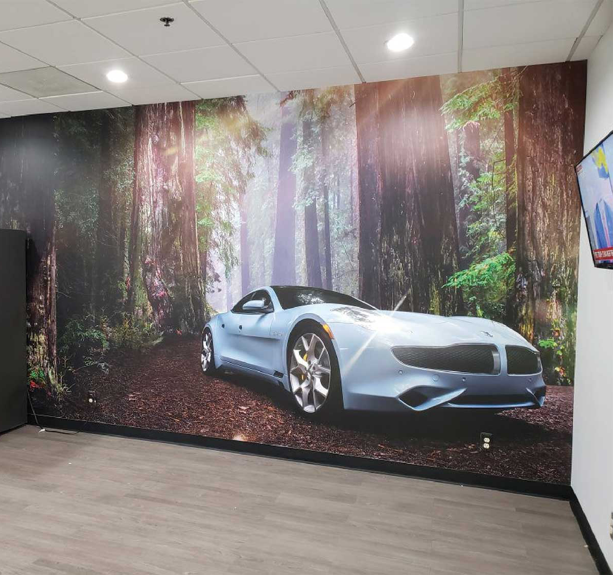 Wall Wraps and Murals